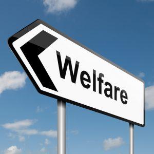 Welfare (3) Imc