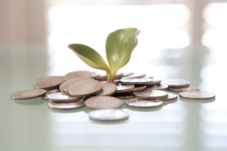 Impact Investing - Investimento sostenibile Imc