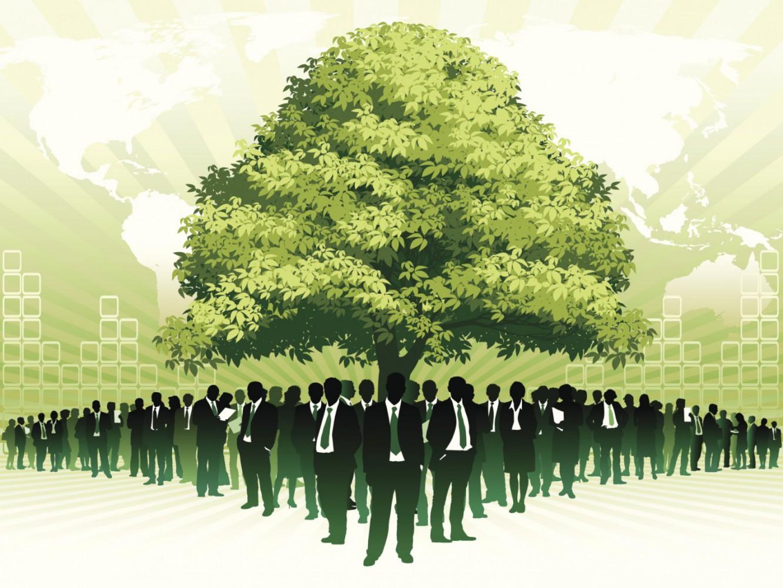 Certificazione ambientale (2) Imc