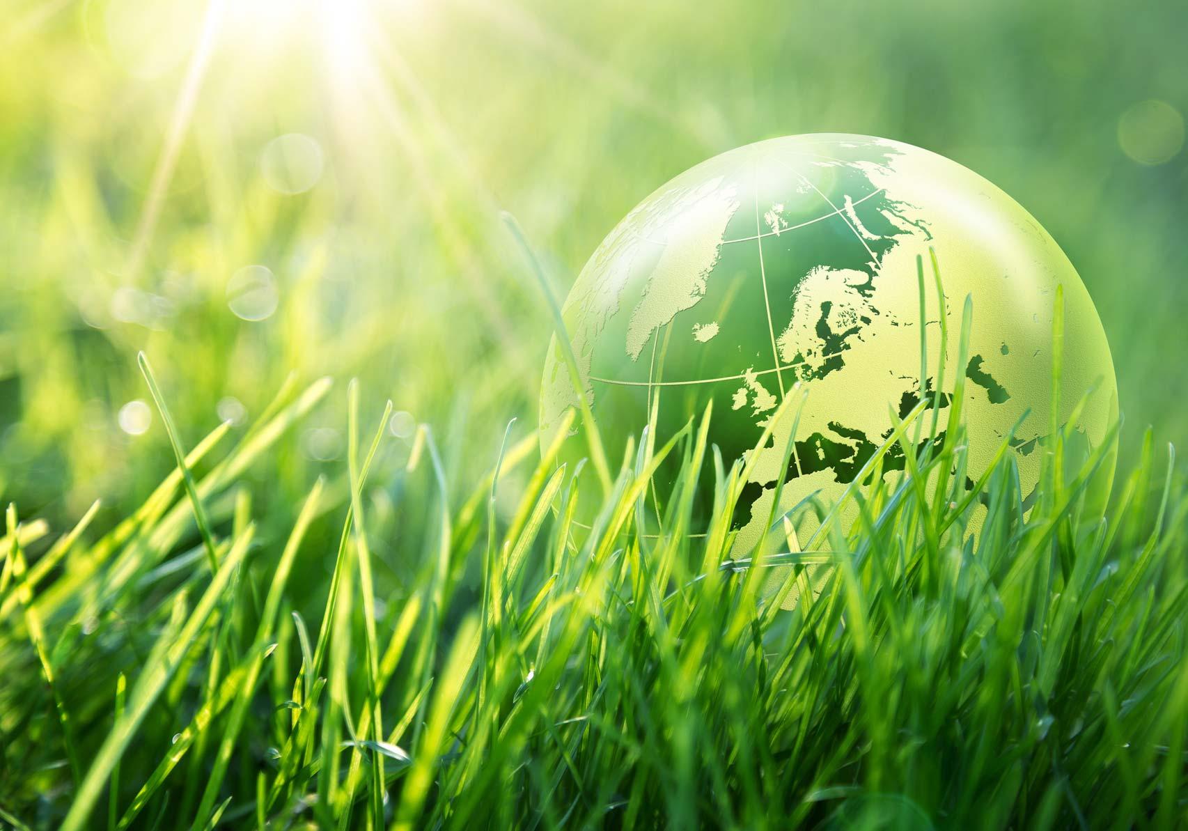 Sostenibilità Imc