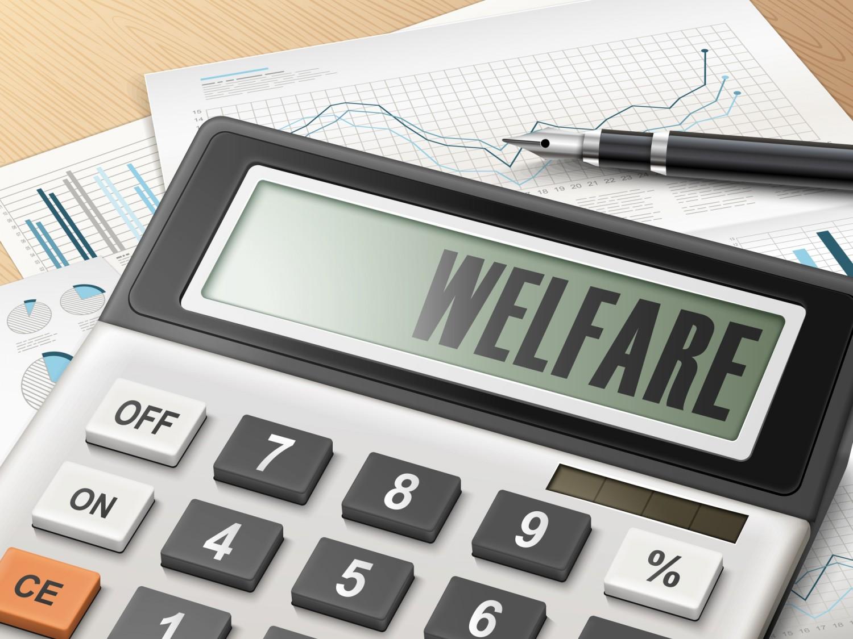 Welfare (4) Imc