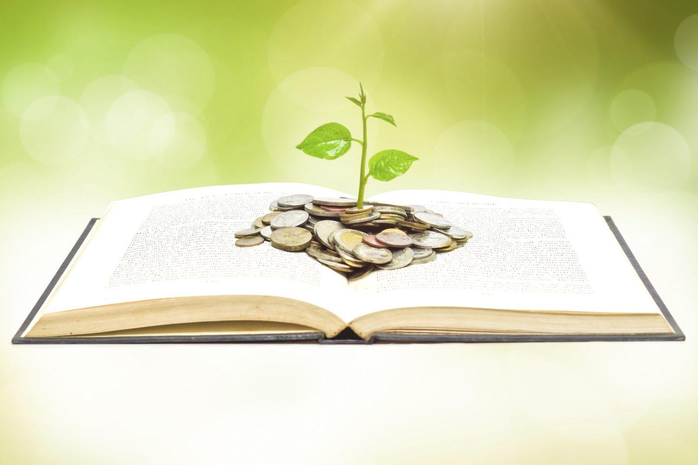 Educazione finanzaria (6) Imc