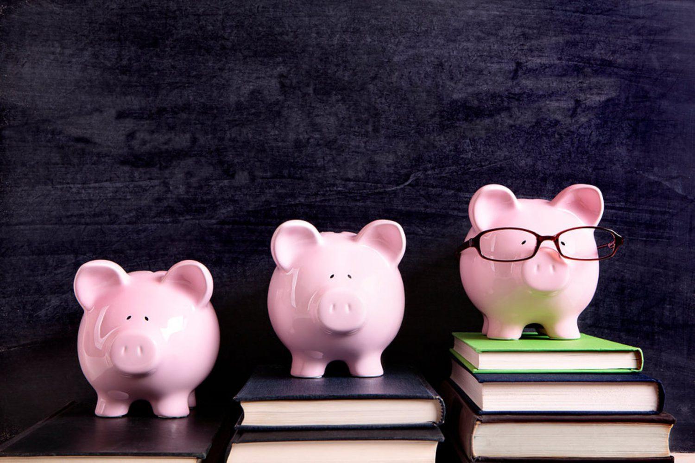 Educazione finanziaria (7) Imc