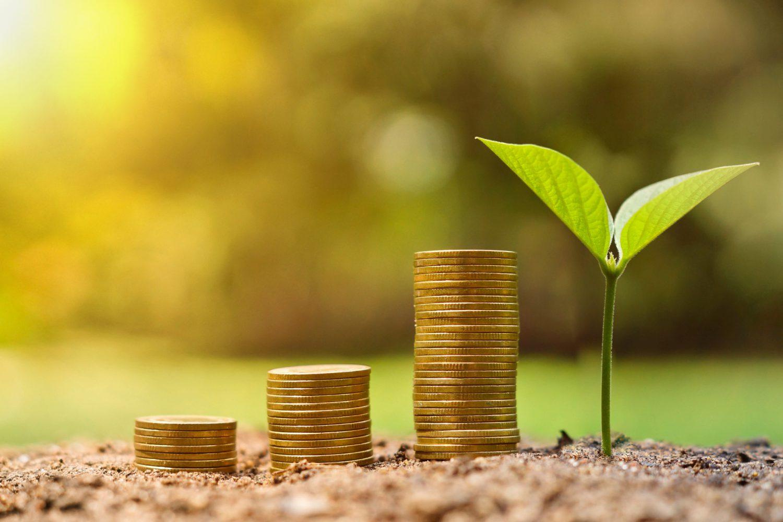 Risparmio - ESG Imc