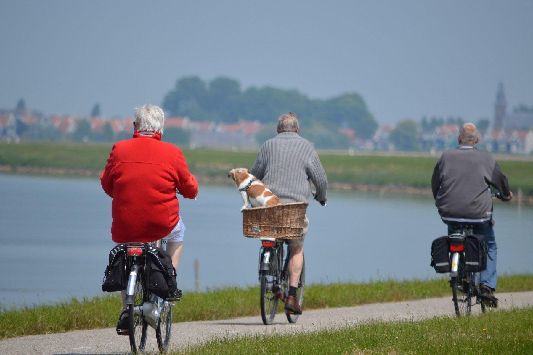 Pensione - Anziani - Vecchiaia Imc