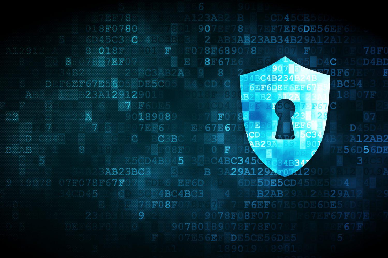 Cyber Risk - Rischi informatici (4) Imc