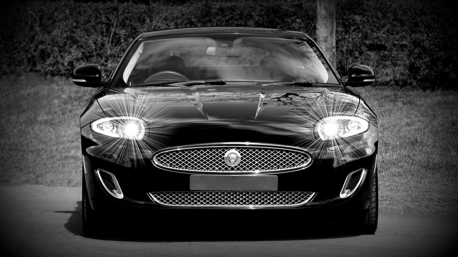 Jaguar Imc