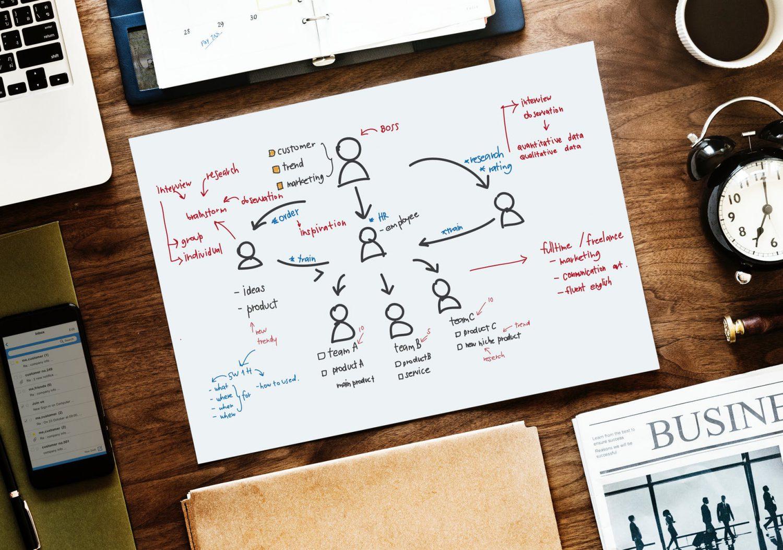 Organizzazione - Processo decisionale Imc