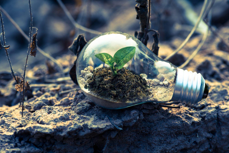Risparmio energetico - Sostenibilità ambientale Imc