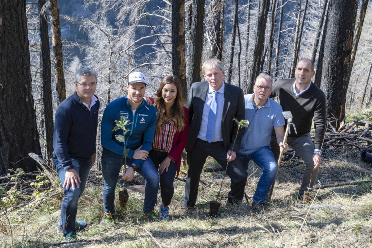 Helvetia - Rimboschimento bosco protezione Canton Ticino Imc