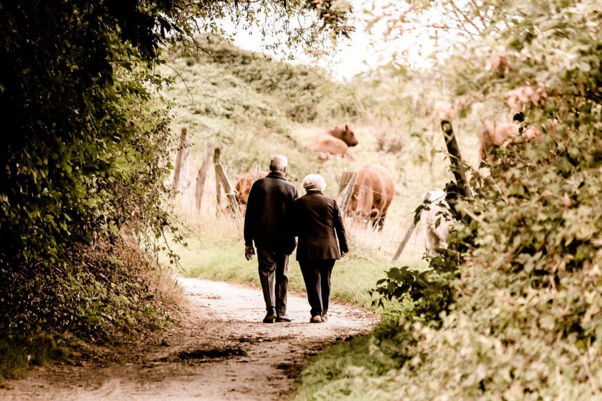 Pensioni - Anziani - Longevità Imc